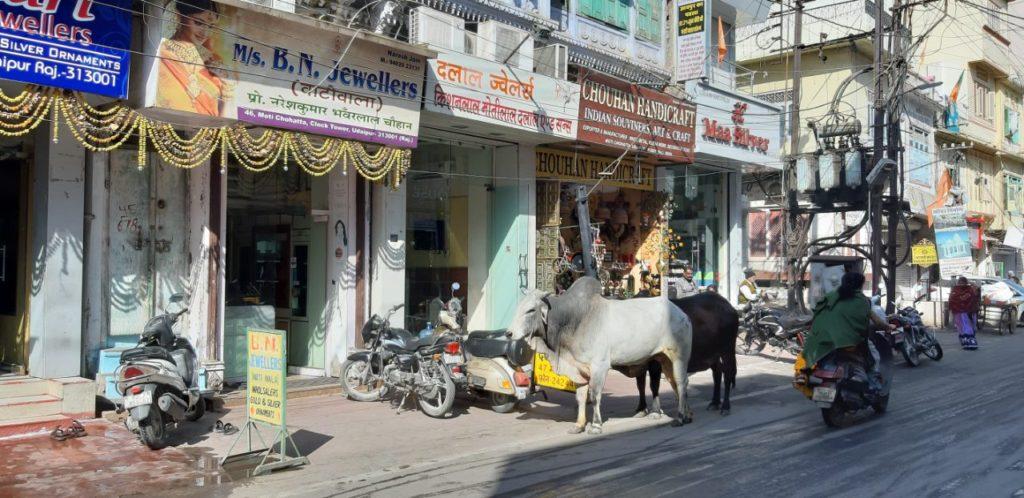 Погружение в Индию
